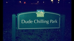 Dude Chilling Park sign