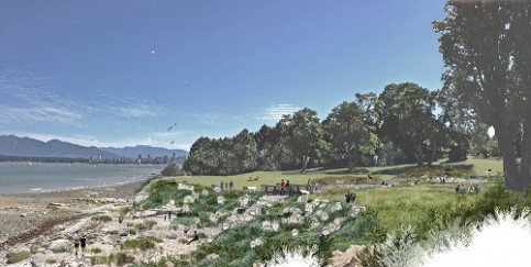 Tatlow Creek restoration area. Image: Paul Sangha Landscape Architecture